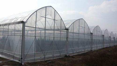 薄膜温室大棚价格