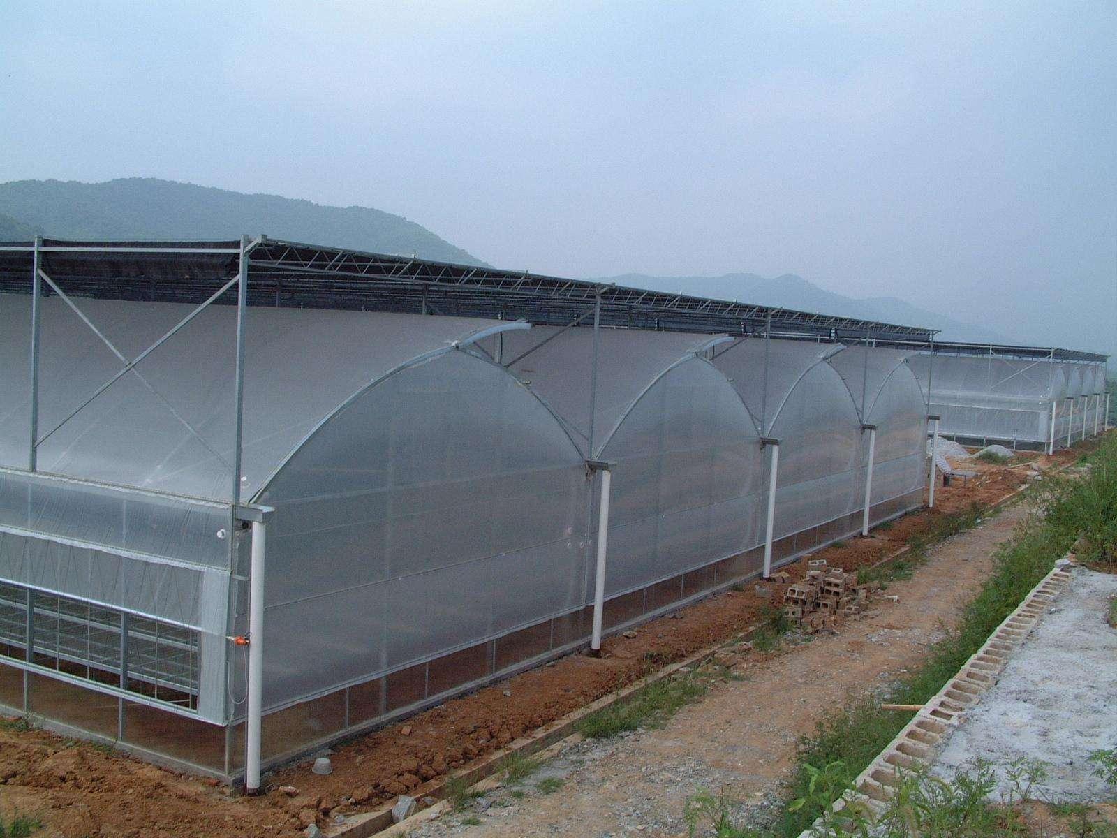 薄膜温室大棚安装