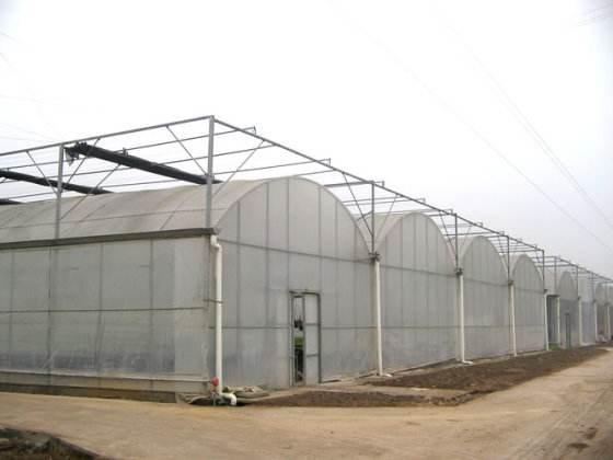 薄膜温室大棚厂