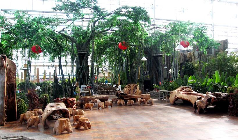生态酒店图片
