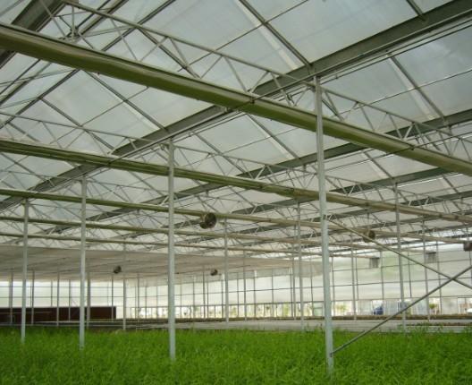 钢架温室大棚建造