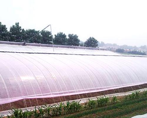 灌浆膜对植物生长的作用