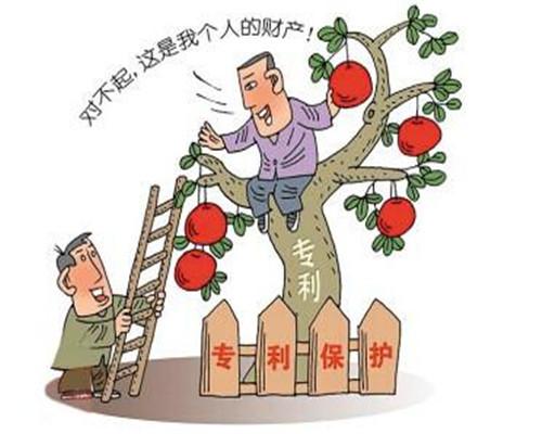 青島知識產權
