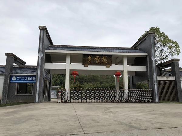 宁德福鼎太姥山绿雪芽白茶庄园强化复合地板安装