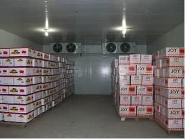 冷库专业安装公司