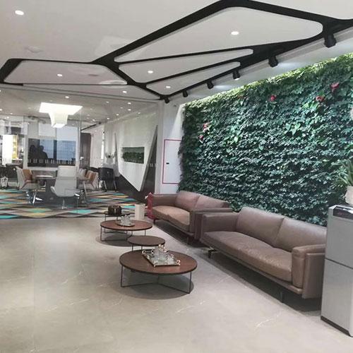 庭院绿植墙
