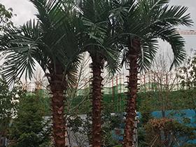 庭院景观设计的四个要点