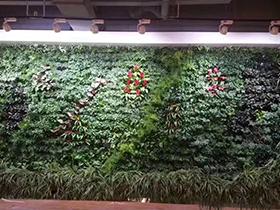 垂直绿化的制作流程