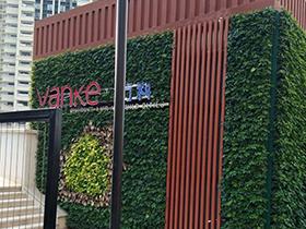 乌鲁木齐垂直绿化设计公司