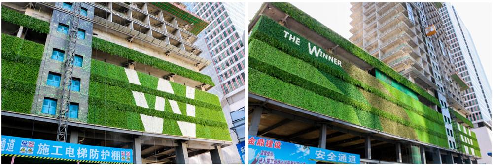 乌鲁木齐垂直绿化制作