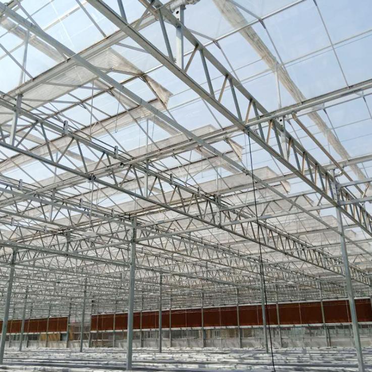 玻璃温室大棚应怎样合理进行降温?