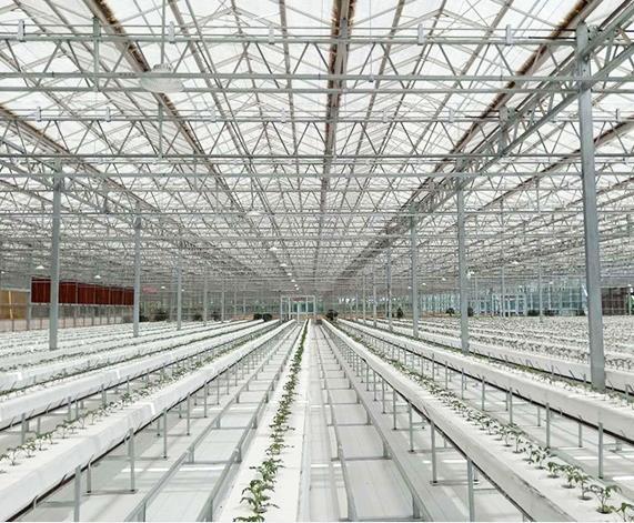 宁夏新型温室大棚