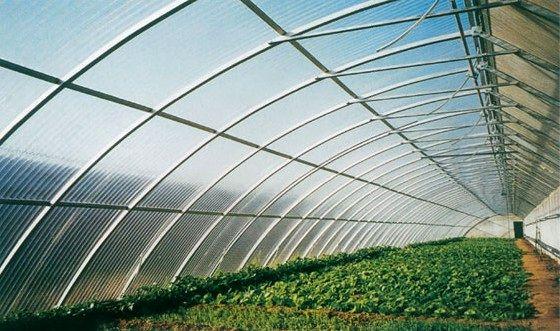 银川半坡温室大棚