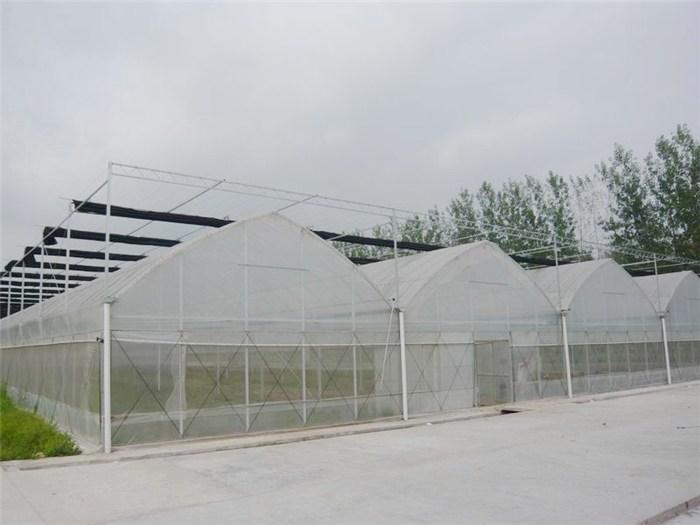 薄膜拱形温室大棚