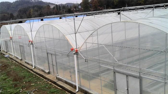 银川拱形温室大棚