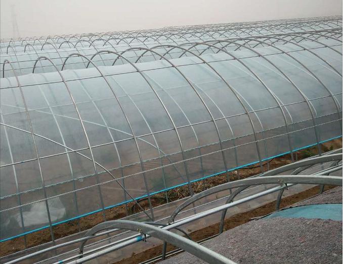 银川市拱形温室大棚建设