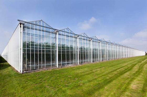 銀川陽光板的溫室大棚的優缺點介紹