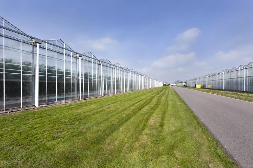 改造銀川溫室大棚的流程中需要考慮到的因素
