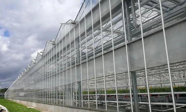 银川蔬菜温室大棚使用保温被的优势