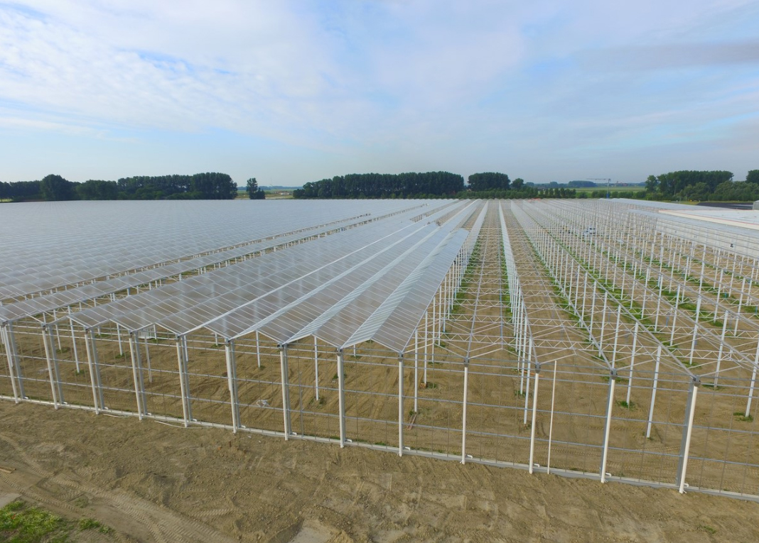 銀川蔬菜溫室大棚建設棚內溫度和濕度管理的方法