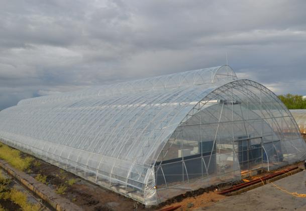 温室大棚建设前应该合理的进行设计