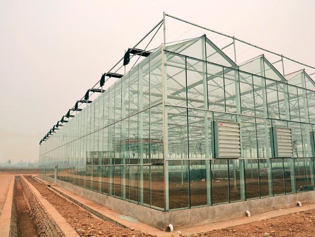钢结构玻璃温室大棚