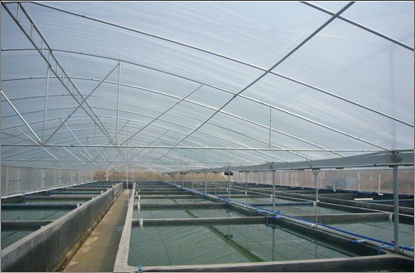 水产养殖大棚
