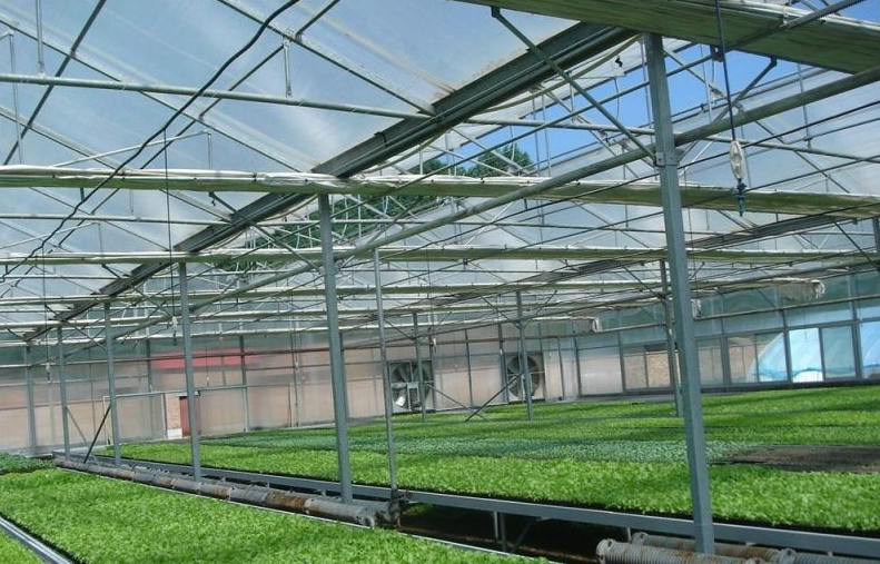 银川玻璃温室大棚