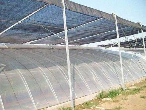 銀川玻璃溫室大棚主要采用的材料