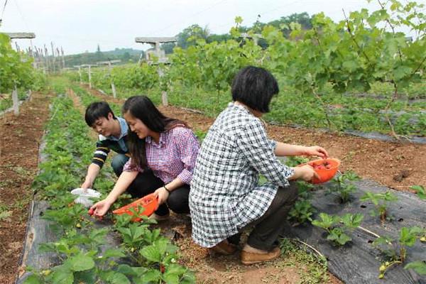 重庆周边农家乐