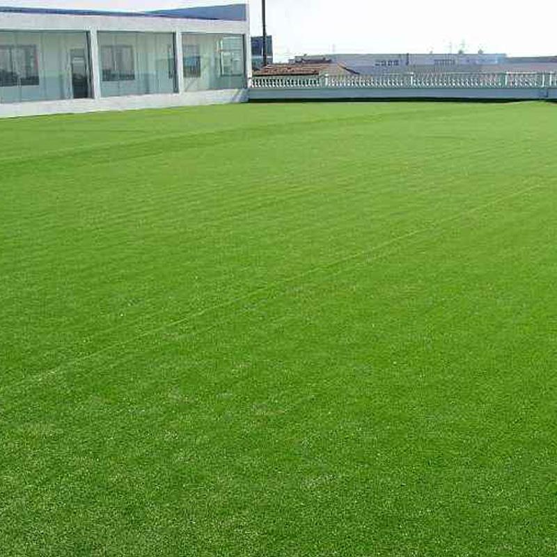 山东人工草坪