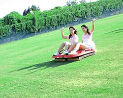山庄娱乐草场