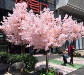 西安仿真樱花树厂家