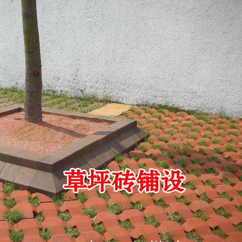 草坪砖铺设