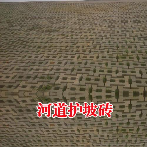 河道护坡砖