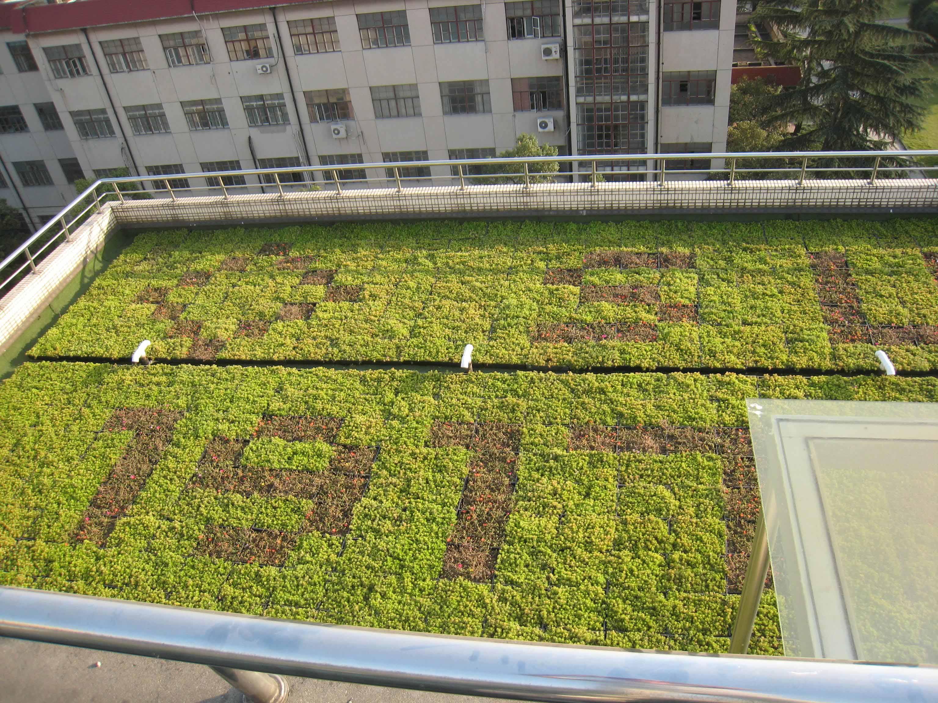 渭南楼顶绿化