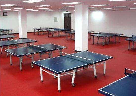 西安乒乓球塑胶地板价格