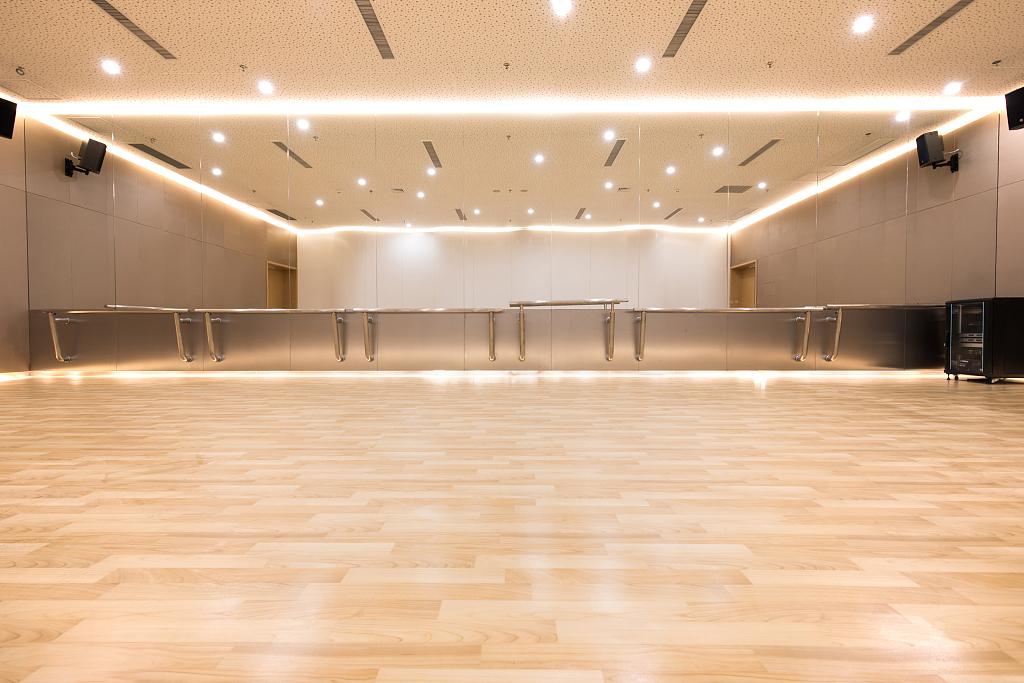 西安室内运动木地板价格