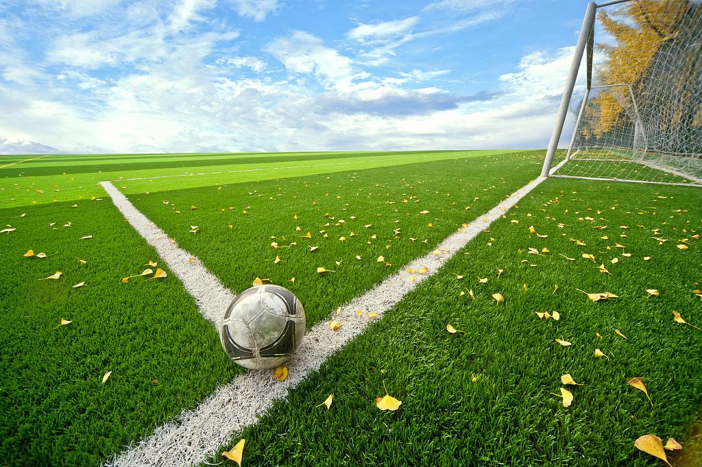 西安足球场人造草坪价格