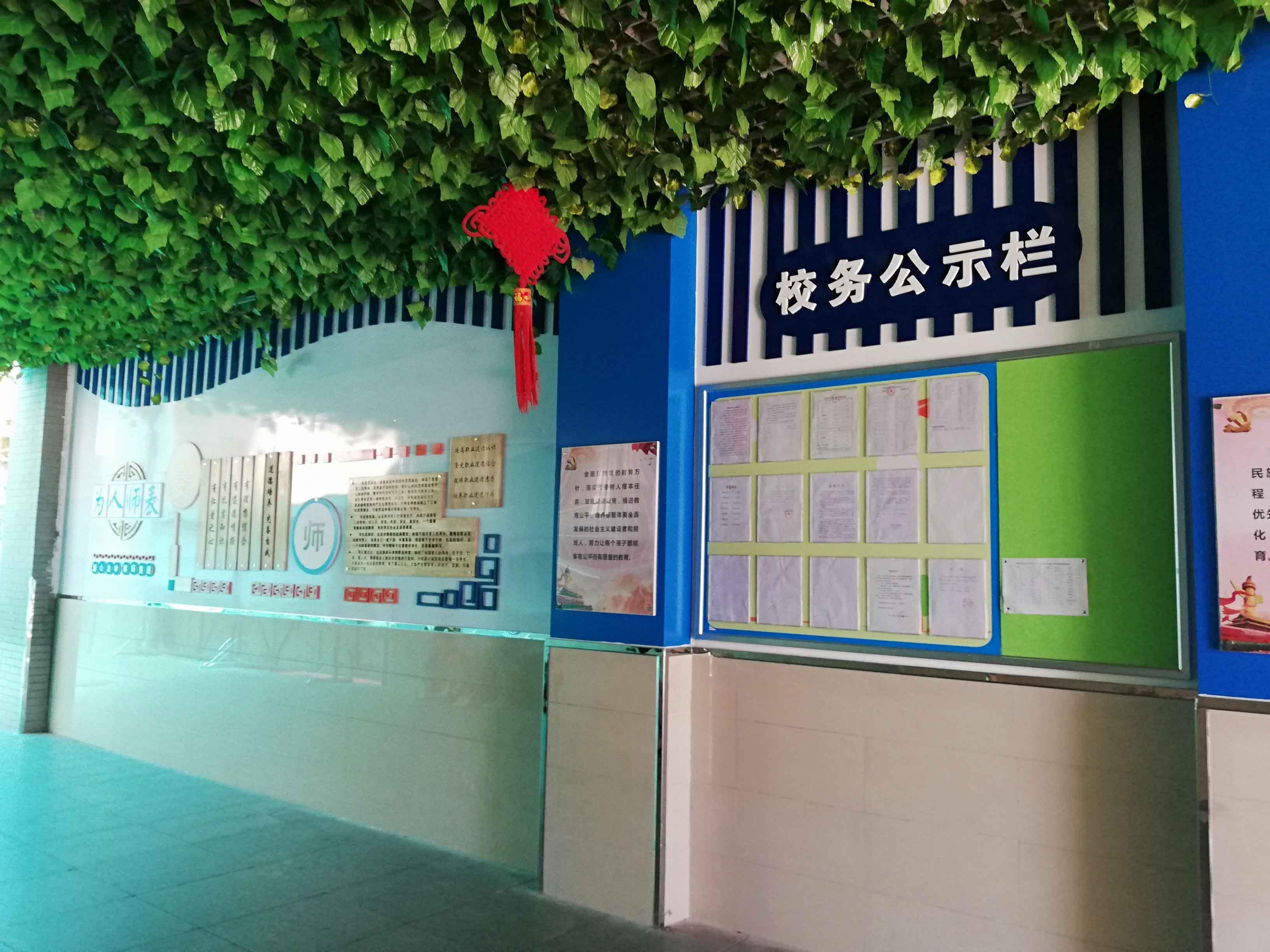 专业小学校园文化建设
