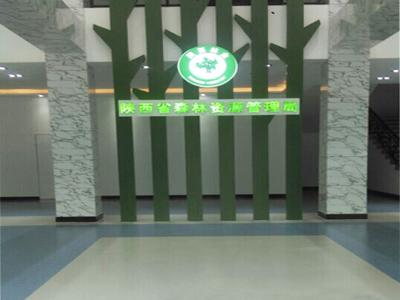 陕西省森林管理局橡膠地板案例