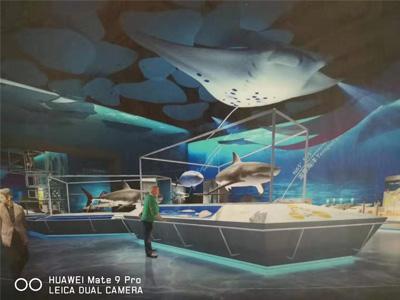 天津国家海洋博物馆橡胶地板案例