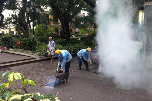 专业灭蚊蝇服务