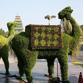 动物绿雕设计