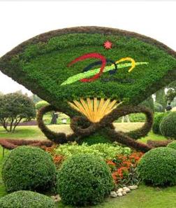 五色草植物绿雕