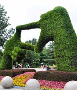 仿真植物绿雕