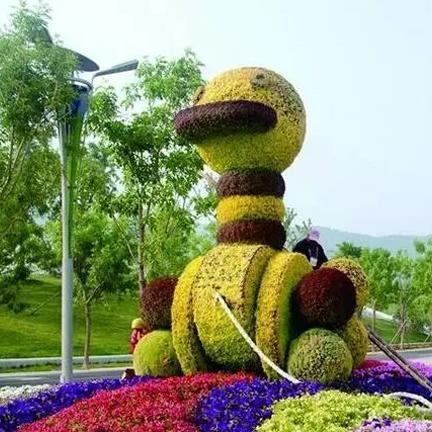 植物绿雕景观