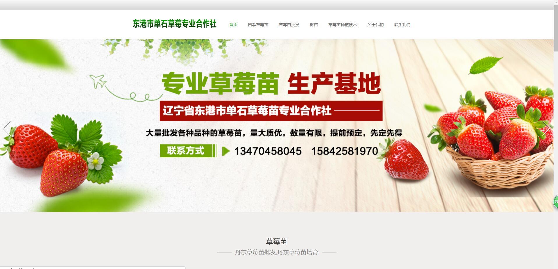榆林草莓苗指数4200多在首页排名