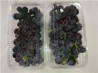 夏黑葡萄多少钱一斤
