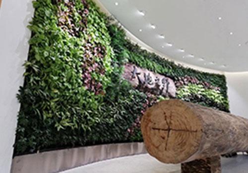 西安垂直绿化